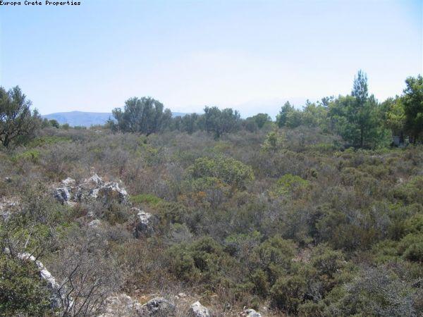 Plot in Korakies, Akrotiri