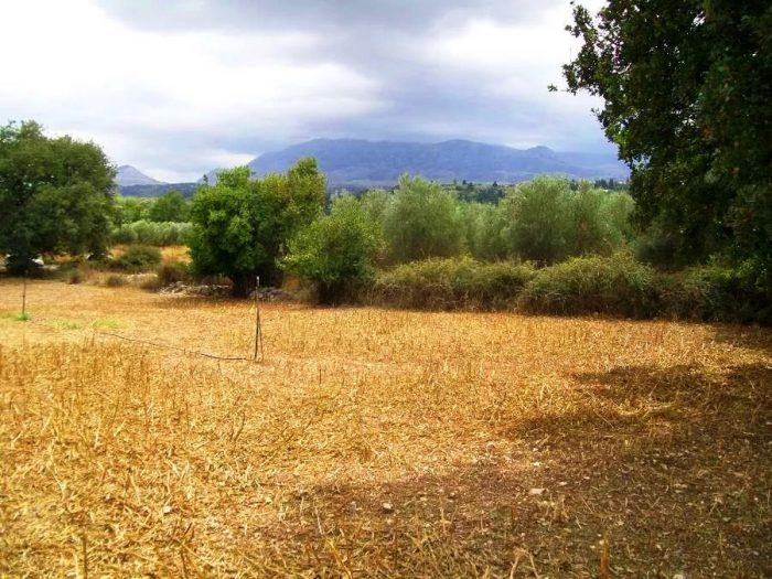 Plot with White Mountains view in Kryonerida