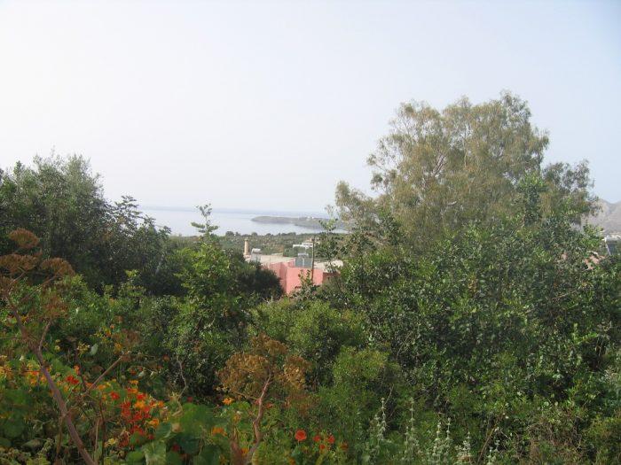 Plot in Kounoupidiana, Akrotiri